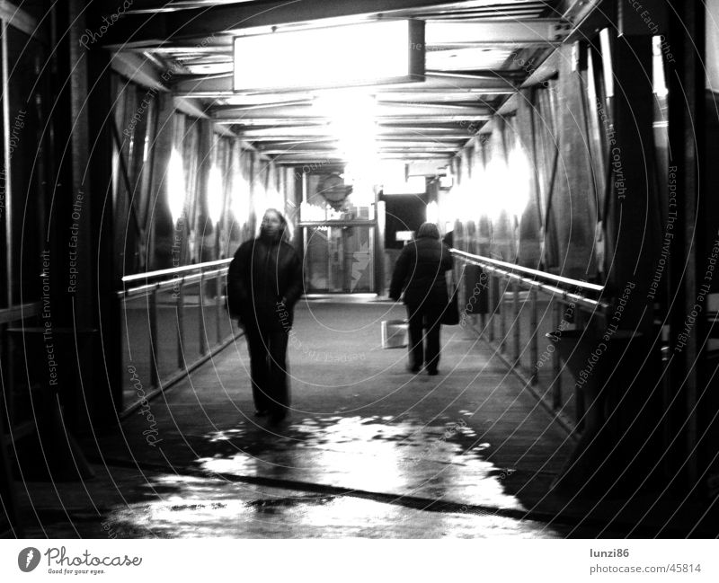 Transition Pedestrian Frontal Human being Damp Reflection Long exposure Graz Tunnel Dark Wet Light Flashy Night Rain Passage Bridge Fear Panic run Bright