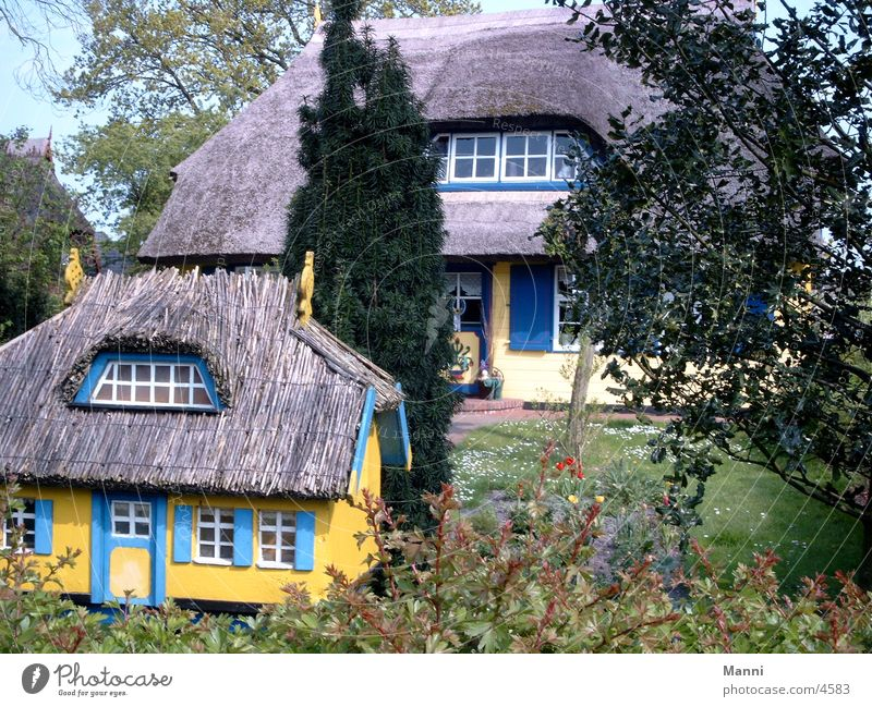 thatched house House (Residential Structure) Architecture Marsh grass