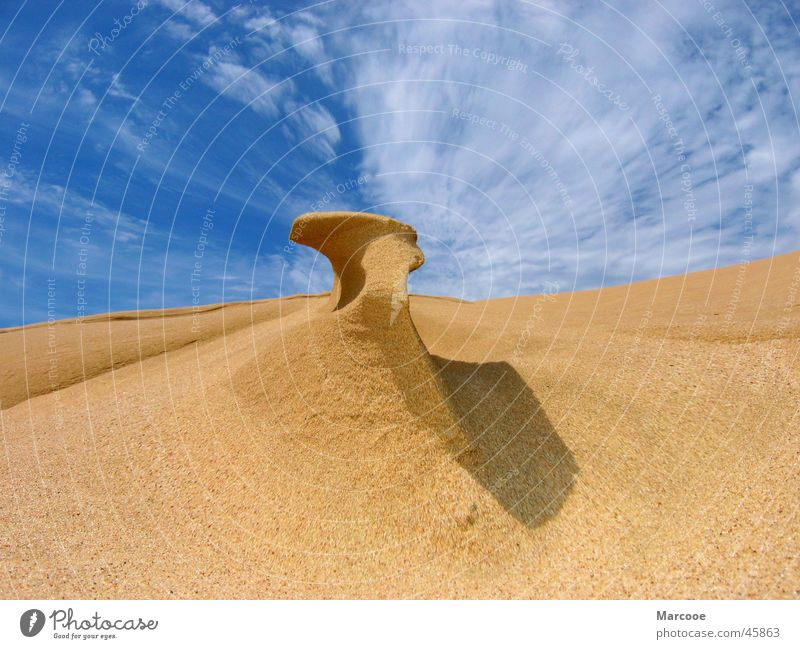 Sand Structure New Zealand 90 Mile Beach Ocean Structures and shapes Heaven and Sand