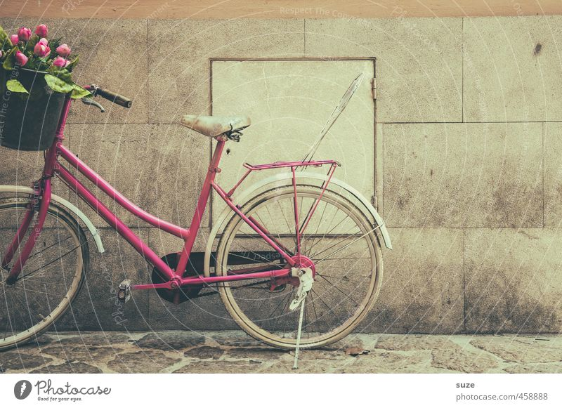 Wall with kind regards Lifestyle Shopping Style Leisure and hobbies Bicycle Feminine Flower Tulip Wall (barrier) Wall (building) Means of transport Stand Old