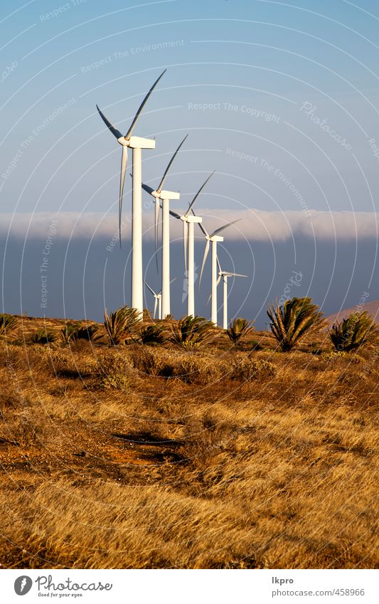 in the isle of lanzarote spain Plate Vacation & Travel Renewable energy Wind energy plant Nature Plant Sky Clouds Gale Grass Hill Architecture Facade Metal