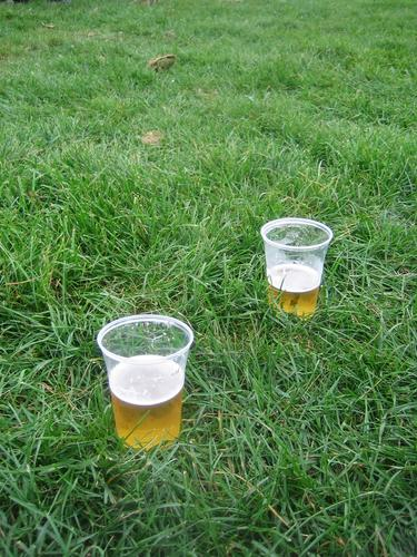 beer in the meadow Beer Fluid Meadow Beautiful Together Man Well-being Exterior shot Liquid Nature Emotions Field recording Gastronomy Alcoholic drinks Happy