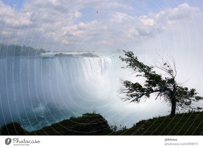 the falls Environment Nature Landscape Elements Water Sky Clouds Horizon Summer Tree Canyon River bank Waterfall Niagara Falls (USA) Niagara river Aggression
