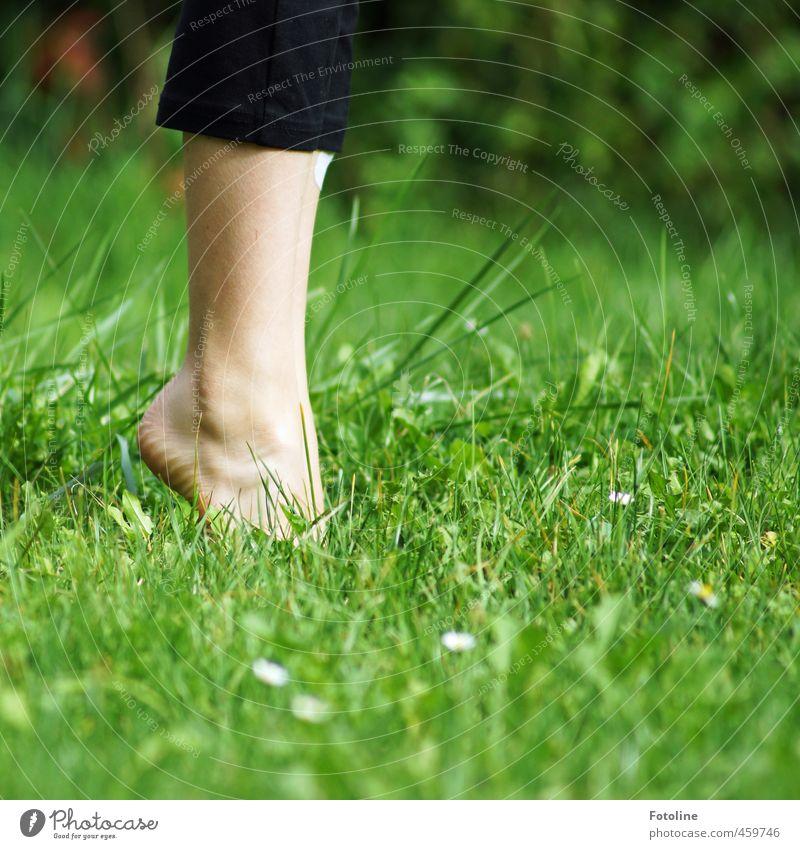 Human being Child Nature Green Plant Summer Girl Environment Warmth Feminine Grass Legs Natural Bright Garden Feet