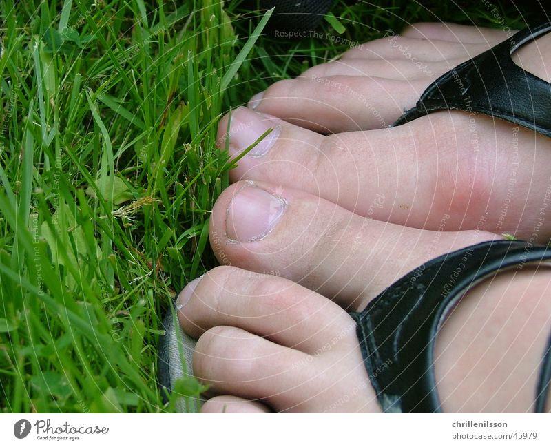 Feet in grass feet foot