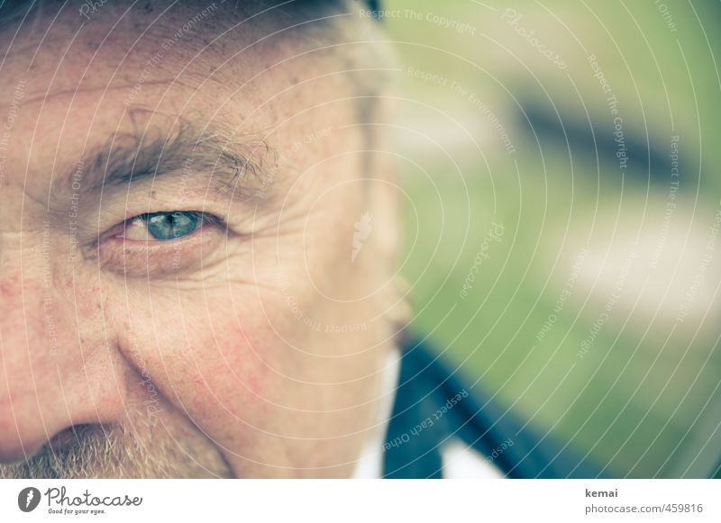 Human being Man Blue Green Calm Adults Eyes Life Senior citizen Masculine 60 years and older 45 - 60 years Male senior Serene Father Cheek