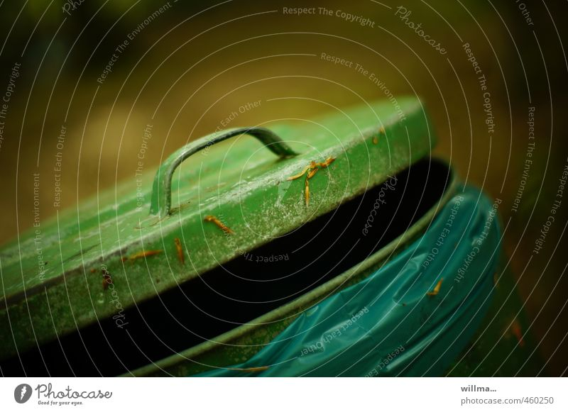 Cry! Trash container Garbage bag Blue Brown Green Environmental pollution Door handle Open Cap Colour photo Exterior shot Deserted Copy Space top