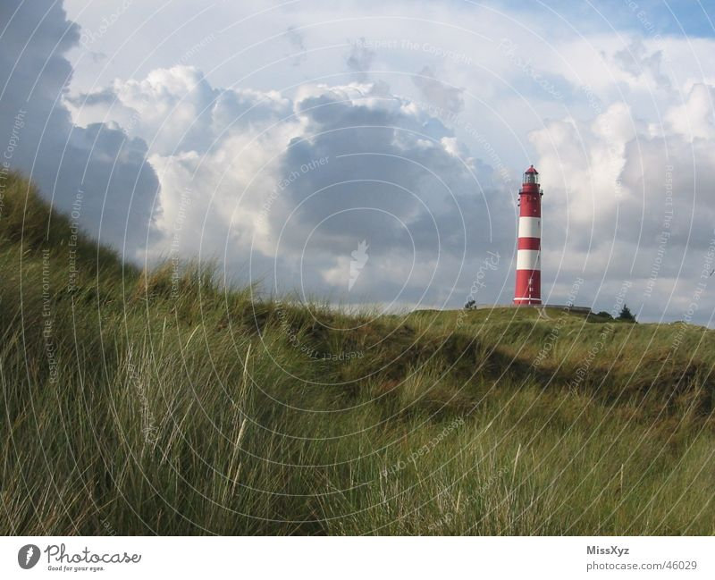 Lighthouse on Amrum Red White Ocean Clouds Loneliness Tree Bushes Vacation & Travel Meadow Nature Germany Exterior shot Island North Sea Sky Beach dune Sun
