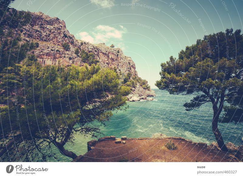Nature Vacation & Travel Summer Tree Ocean Landscape Beach Mountain Coast Rock Idyll Earth Vantage point Fantastic Bay Spain