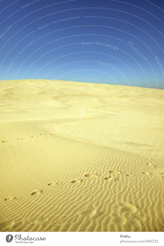 Nature Vacation & Travel Blue Summer Sun Landscape Far-off places Yellow Environment Warmth Sand Horizon Earth Climate Tourism Beautiful weather