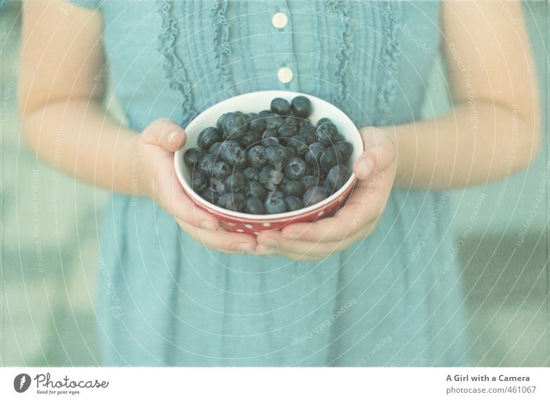 offerings Food Fruit Blueberry Nutrition Organic produce Vegetarian diet Diet Human being Feminine Girl Infancy Life Arm Hand 8 - 13 years Child Stop Offer Bowl