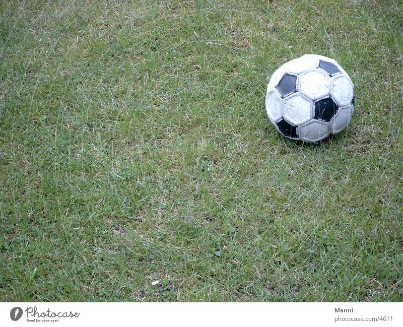 WORLD CUP 2002 Sports Soccer Lawn