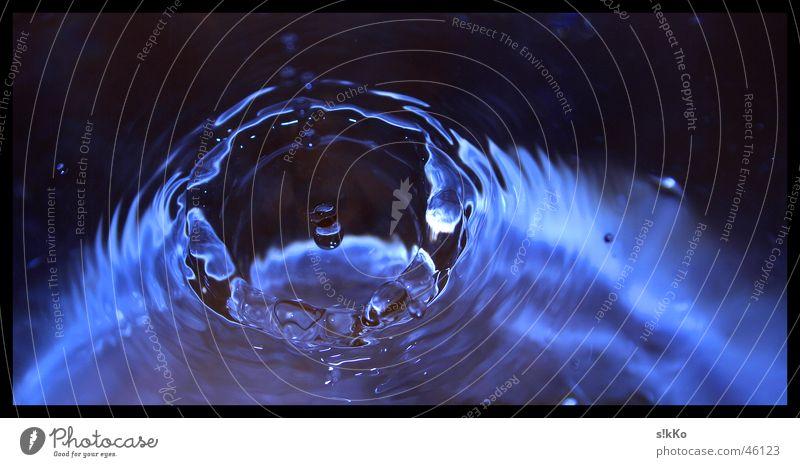Water Waves Drops of water Treetop