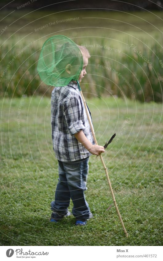 Human being Child Water Meadow Playing Boy (child) Masculine Leisure and hobbies Infancy Wait Cute Adventure Net Fishing (Angle) Brook Pond