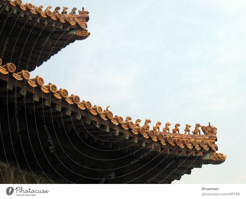 Roof China Brick Dragon Temple Palace Beijing Carve Carving Forbidden city