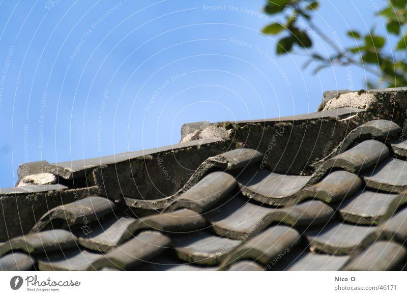 Roof Brick Blue sky