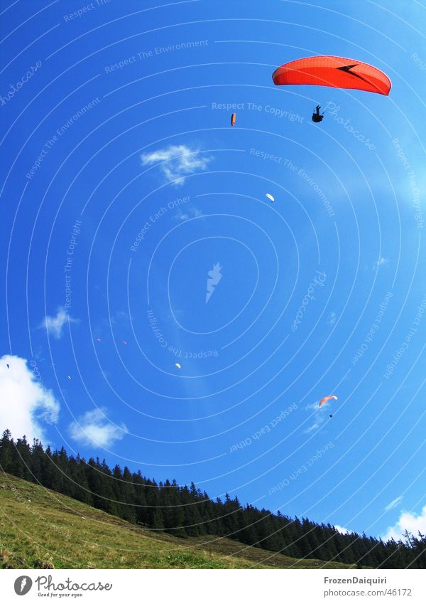 Quiet air traffic #2 Clouds Multicoloured Paraglider Air White Slope Coniferous forest Tree Grass Meadow Hover Hiking Westendorf Federal State of Tyrol Sky Blue