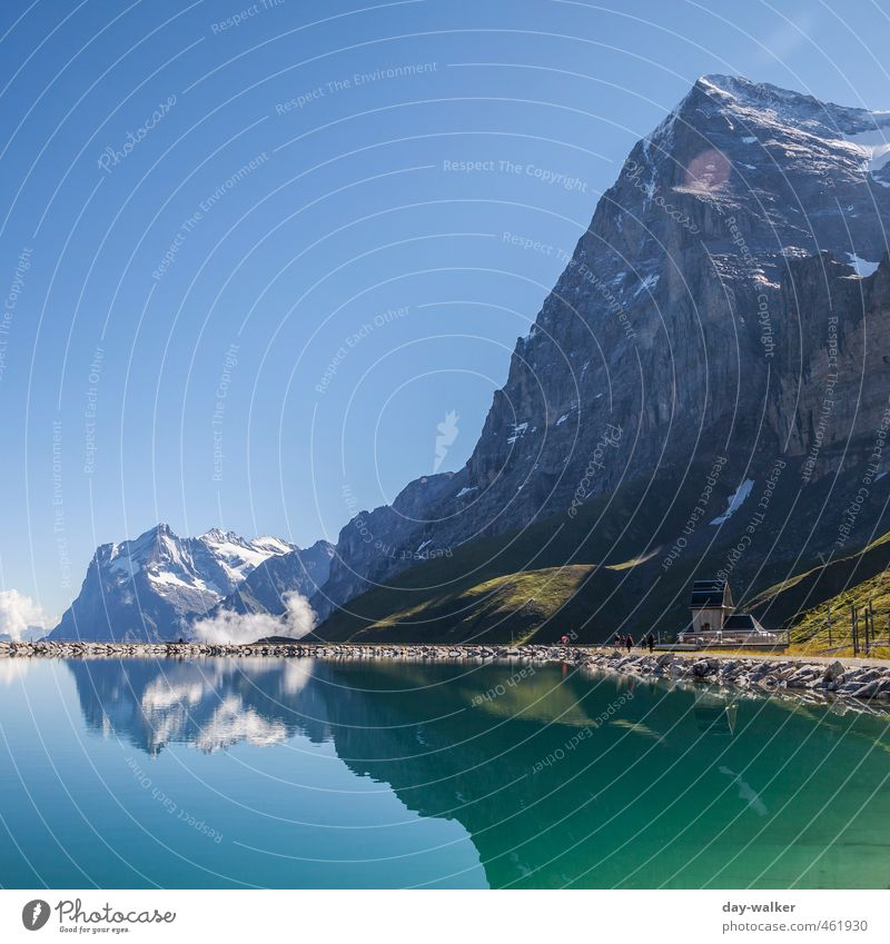 eiger north wall Nature Landscape Elements Cloudless sky Summer Beautiful weather Snow Grass Rock Alps Mountain Peak Snowcapped peak Glacier Lake