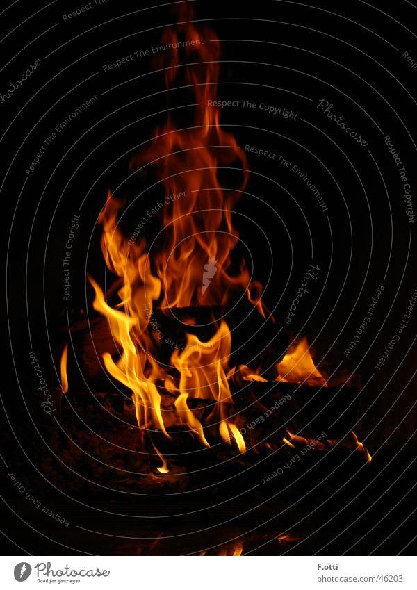 For Hot Dark Long exposure Blaze lamb flicker