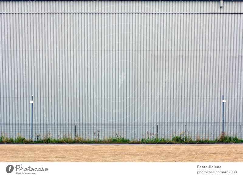 Blue Green House (Residential Structure) Wall (building) Grass Building Wall (barrier) Metal Glittering Facade Work and employment Authentic Threat Stripe
