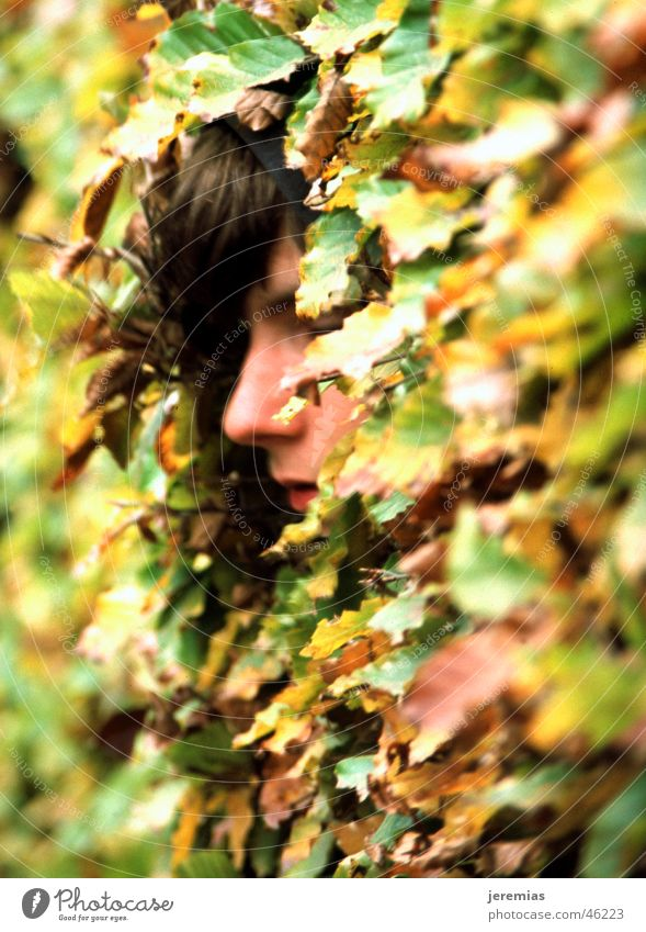 The boy in the bush Fleeting Leaf Green Yellow Analog Slide Depth of field Exterior shot Face Hide Closed