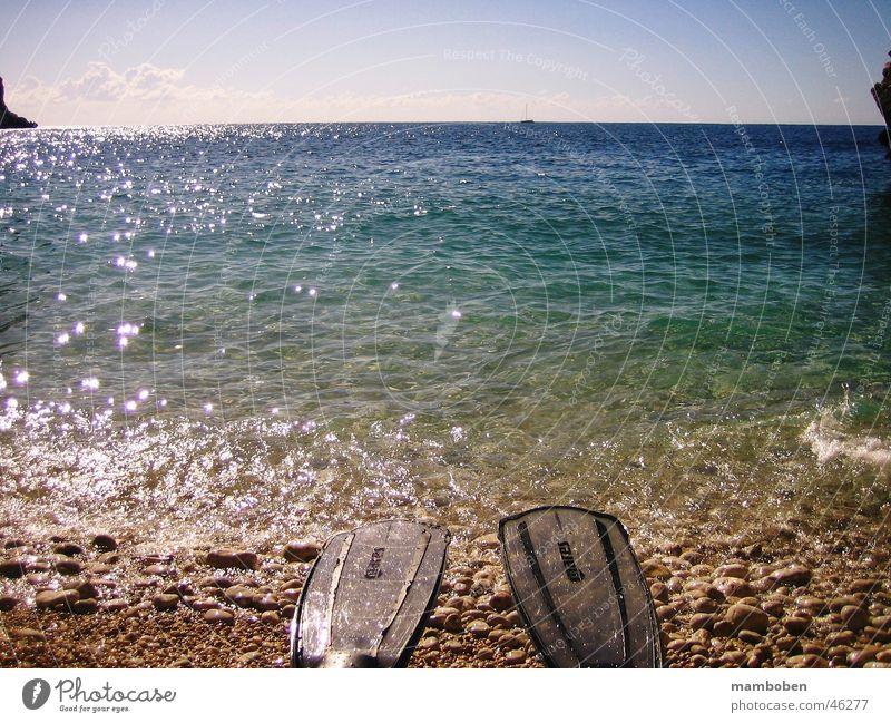 Water Sun Ocean Summer Beach Vacation & Travel Dive