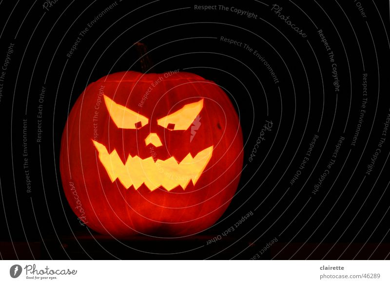 Halloween Pumpkin Colour photo Multicoloured Copy Space right Night Face Hallowe'en Creepy Hot Yellow Gold Black Fear Dangerous Helloween Orange creep