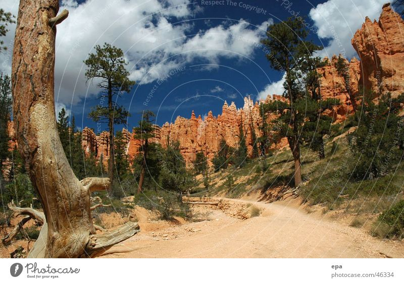 Bryce Canyon 1 National Park Red Vacation & Travel Exterior shot USA Blue Nature Lanes & trails Stone Freedom Sun Contrast Miracle of Nature Day