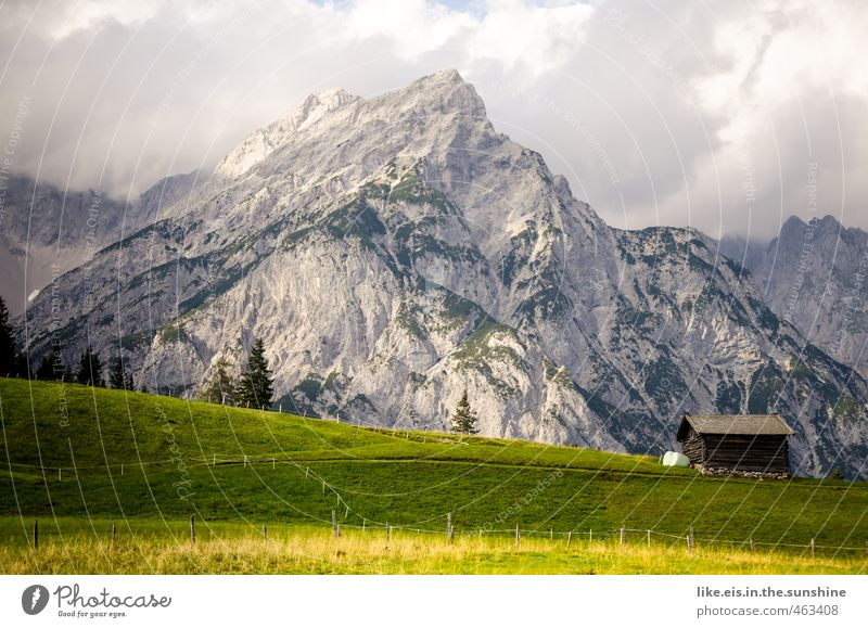 postcard greetings from tirol: 1€ Senses Relaxation Calm Vacation & Travel Summer vacation Mountain Hiking Environment Nature Landscape Tree Grass Alps Peak