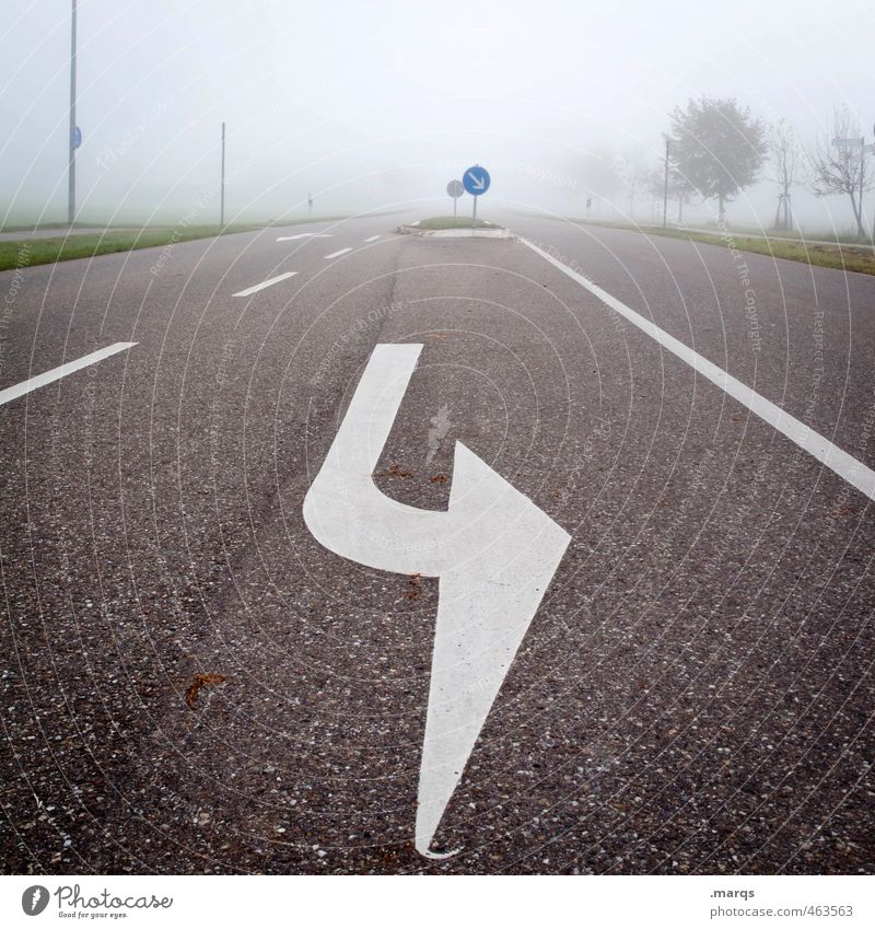gymnastics Trip Climate Fog Tree Transport Traffic infrastructure Road traffic Street Sign Signs and labeling Line Arrow Driving Simple Cold Safety Perspective