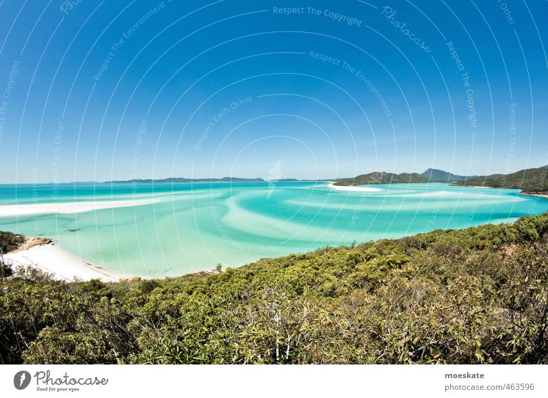 Whitsunday Island - Whitehaven Beach Sky Cloudless sky Horizon Summer Beautiful weather Bay Ocean Pacific Ocean Caribbean Sea Pacific beach Blue Turquoise
