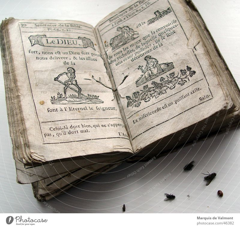 Le Dieu Book Printing Woodcut Religion and faith Bible Still Life Transience Paper Insect The Grim Reaper Skeleton Catholicism Library Beetle Bow Side Death