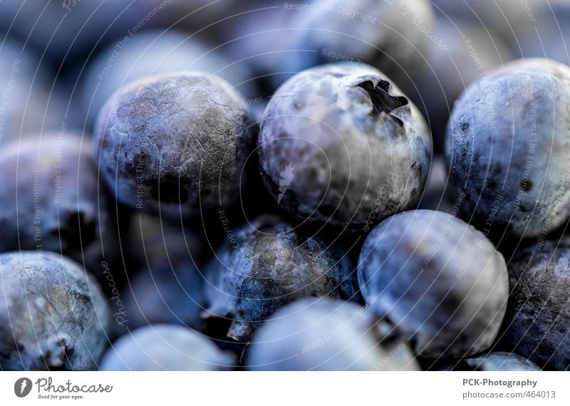 Blueberry scramble Fruit Nutrition Nature Violet Food Fruity Juicy Narrow Attachment Colour photo Close-up Detail Macro (Extreme close-up)