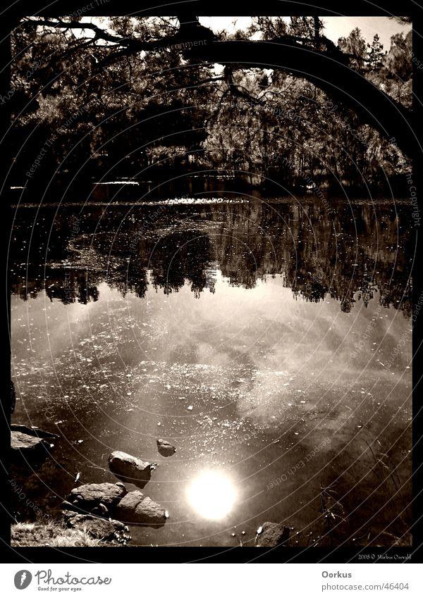 Sun Lake Surface of water