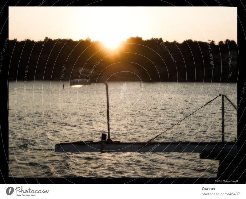 seagull Ocean Seagull Sunset Lantern Sweden