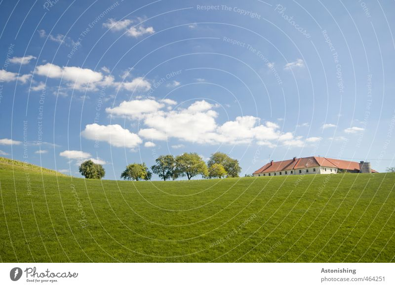 farm Environment Nature Landscape Plant Sky Clouds Horizon Summer Weather Beautiful weather Warmth Tree Grass Leaf Meadow Hill House (Residential Structure)