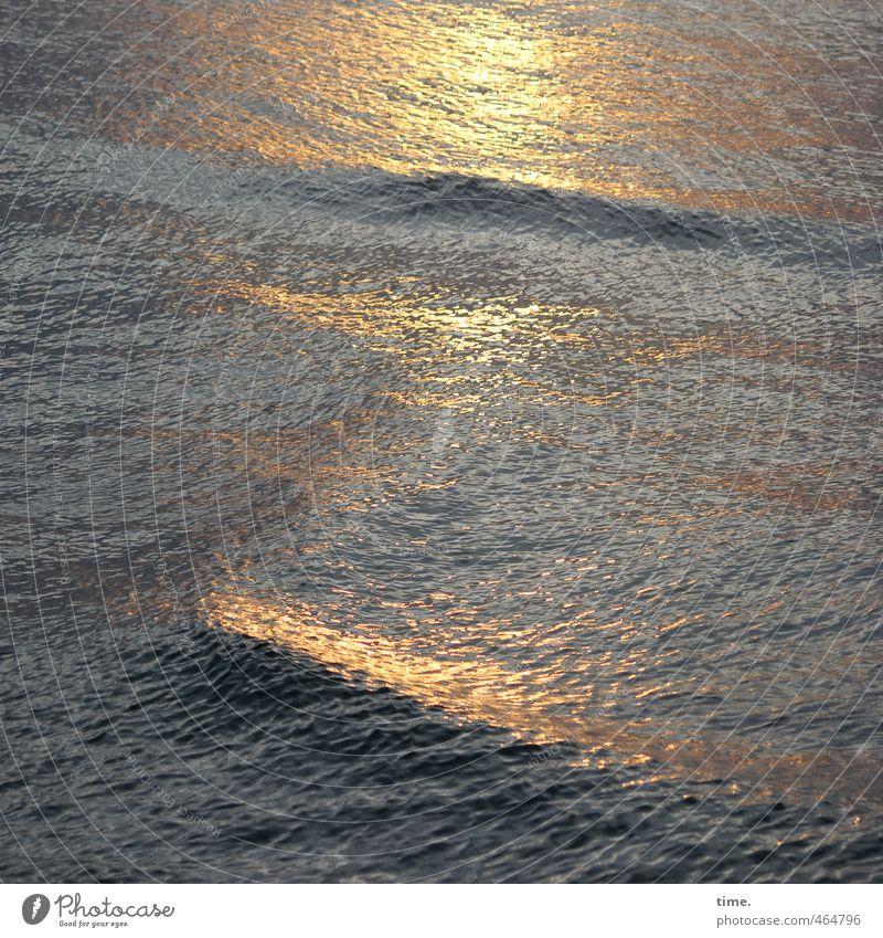 Lifelines #71 Environment Water Sunrise Sunset Beautiful weather Waves Baltic Sea Maritime Fluid Wet Homesickness Wanderlust Loneliness Movement Freedom