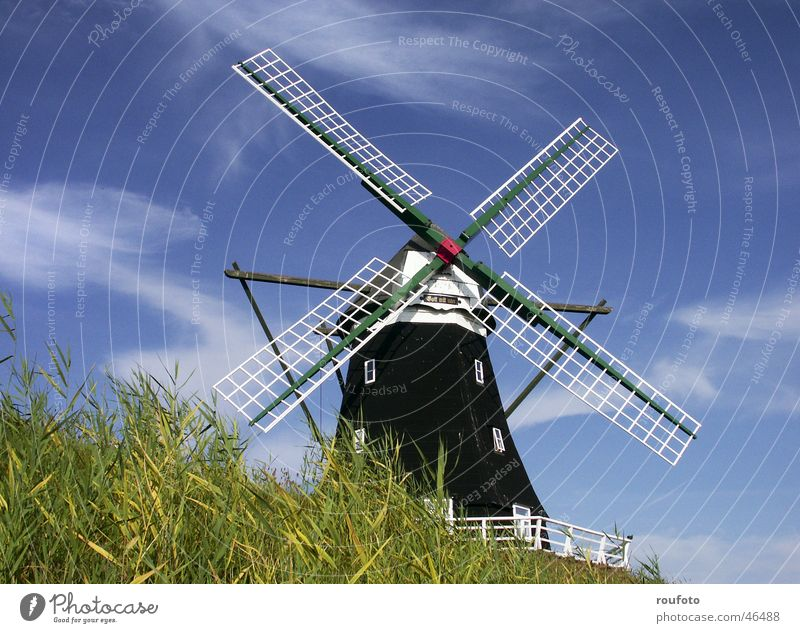 Wind Island Grain Historic North Sea Dike Flour Mince Mill Windmill Schleswig-Holstein Miller North Frisland Pellworm