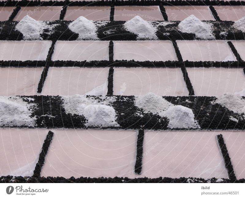 Ocean Grid Salt Black & white photo Saltworks