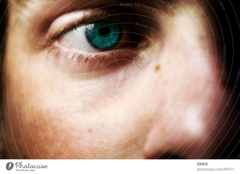 Eyes Nose Self portrait