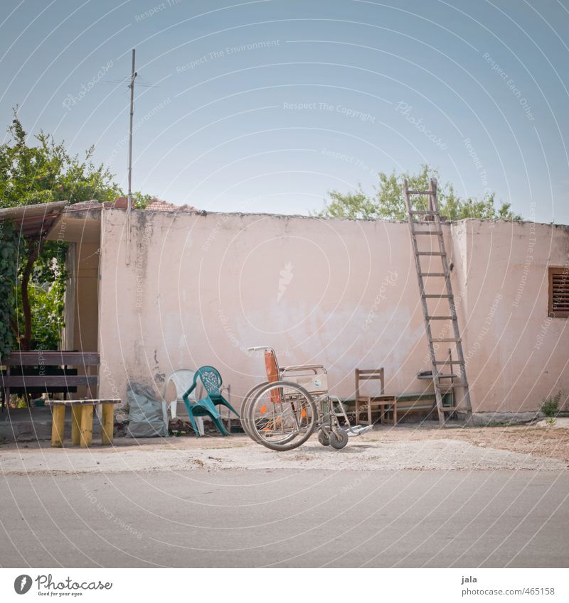 turtleneck Sky Beautiful weather Plant House (Residential Structure) Manmade structures Building Wall (barrier) Wall (building) Facade Dry Town Wheelchair