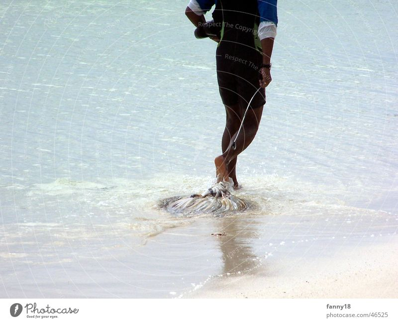 Water Beach Nutrition Death Food Fish Island Catch Fishing (Angle) Pull Fisherman Seychelles Squid Indigenous La Digue
