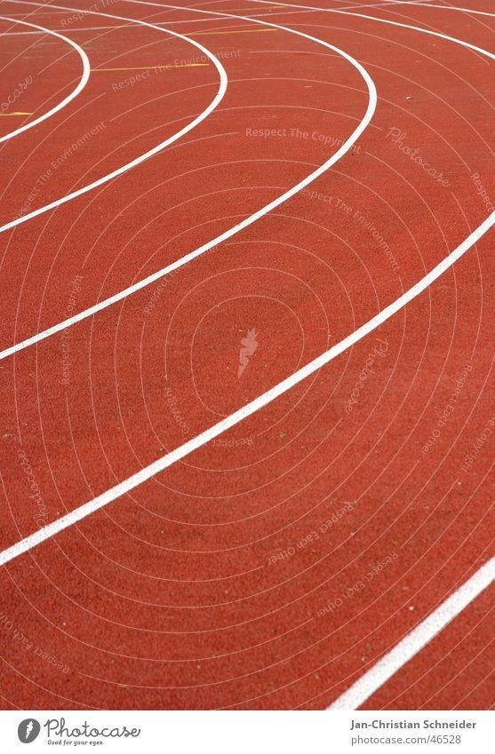 career Red Stripe White Sun Light Subsoil Sporting event Resume Sportsperson Walking Shadow Floor covering Row Railroad Line