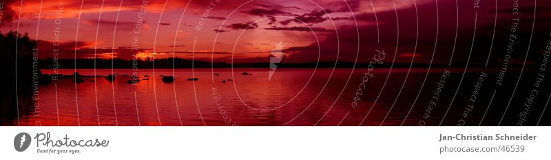 Water Sky Tree Sun Red Vacation & Travel Clouds Dark Bright Pink Horizon Mirror Sweden Sunset