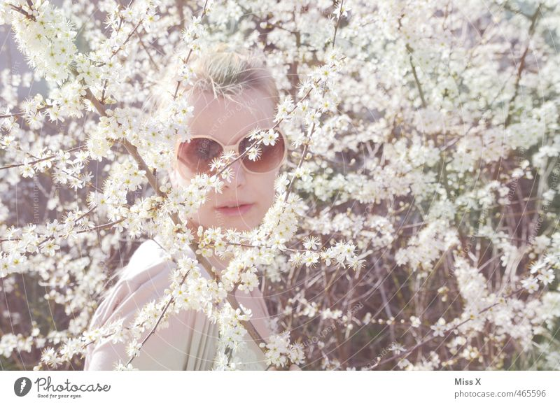 sixties Human being Feminine Young woman Youth (Young adults) Face 1 18 - 30 years Adults Spring Plant Flower Bushes Blossom Accessory Eyeglasses Sunglasses