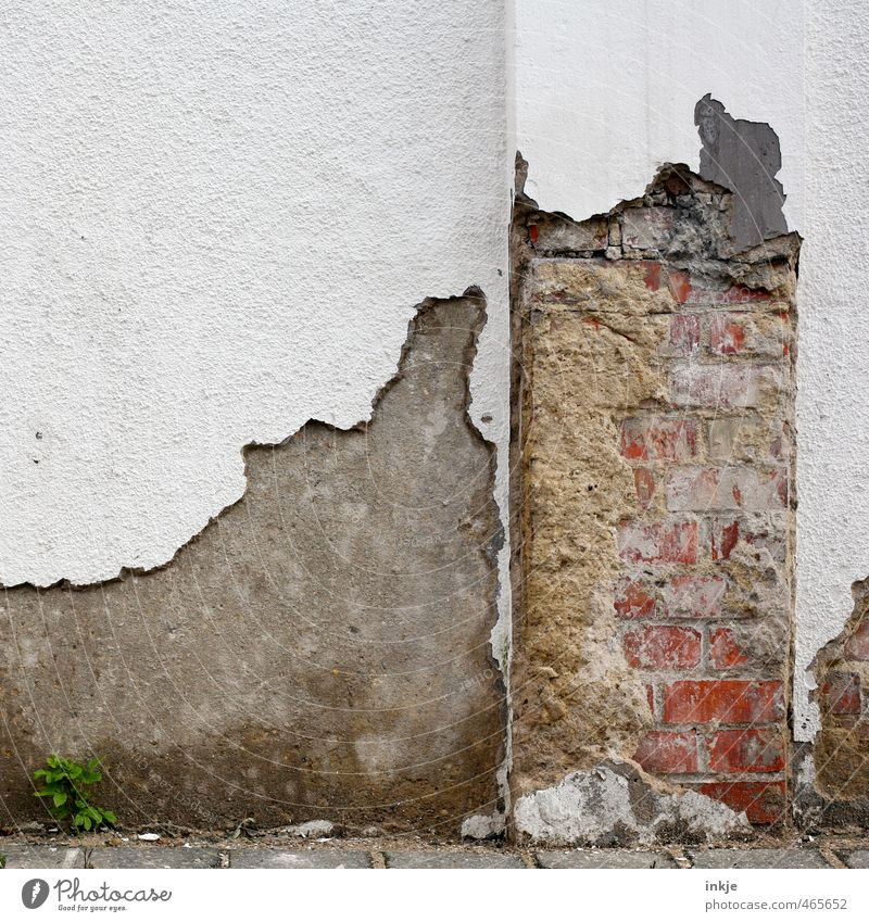 Tooth neck caries | Wall Deserted Ruin Wall (barrier) Wall (building) Facade Stone Concrete Brick Old Broken Decline Transience Change Destruction Flaked off