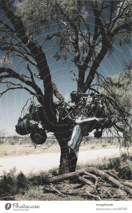 Sky Tree Sun Summer Street Grass Lanes & trails Car Warmth Metal Transport Desert Physics Rust Australia Accident