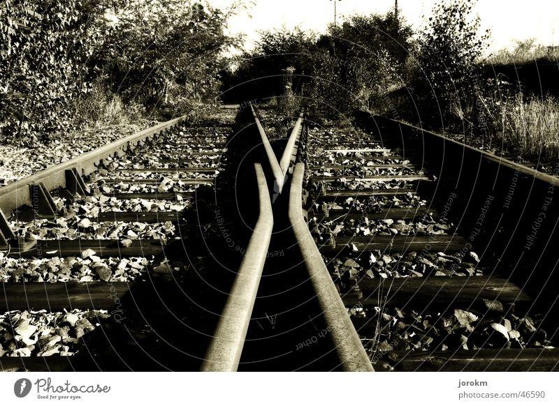 Calm Railroad Railroad tracks Direction Train station Switch Multi-track