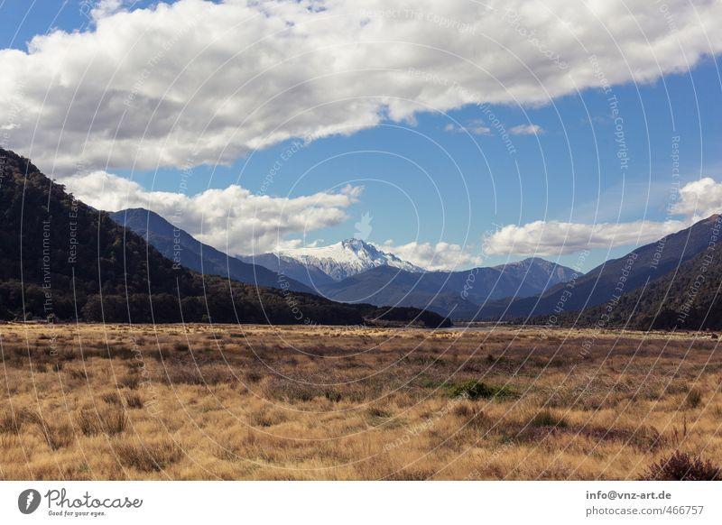 vieW Environment Nature Landscape Sky Clouds Autumn Plant Grass Bushes Wild plant Meadow Forest Hill Rock Alps Mountain Peak Snowcapped peak Glacier