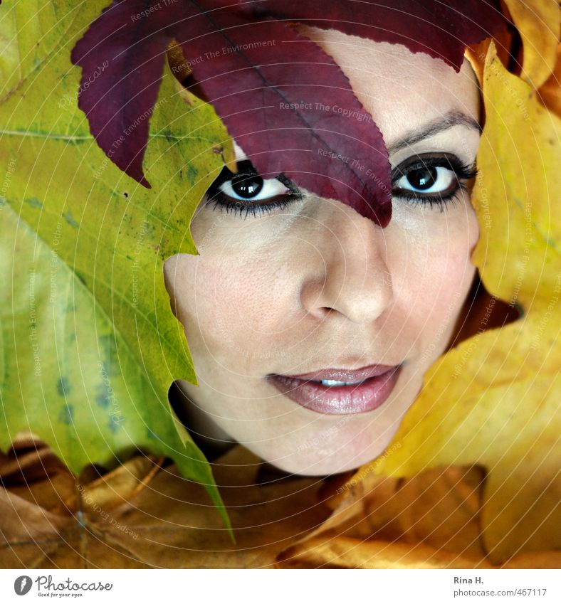 autumn portrait Beautiful Feminine Young woman Youth (Young adults) 1 Human being 30 - 45 years Adults Autumn Leaf Esthetic Multicoloured Yellow Eyes Looking